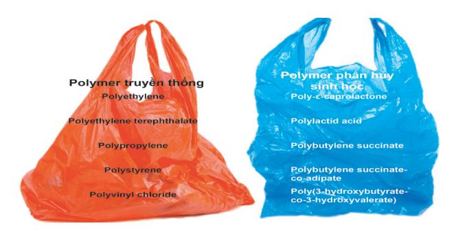 Hình 1. Sản phẩm nhựa có nguồn gốc từ polymer truyền thống và polymer có thể phân hủy sinh học.